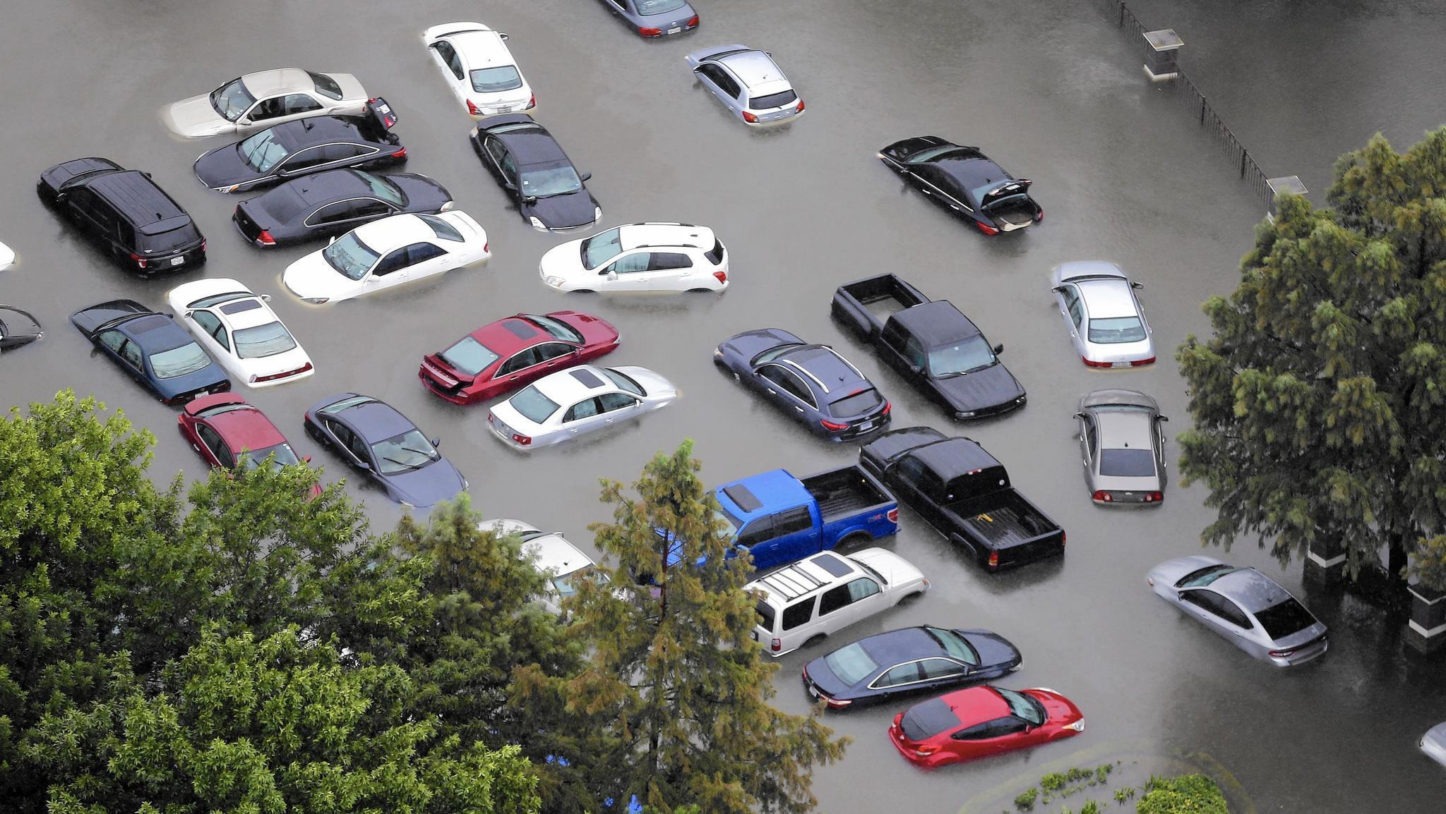 After Hurricanes Flood Of Storm Damaged Cars Heading For