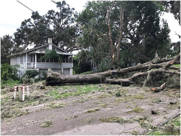 Hurricane Irma Umatilla Bears Brunt Of Damage In Lake