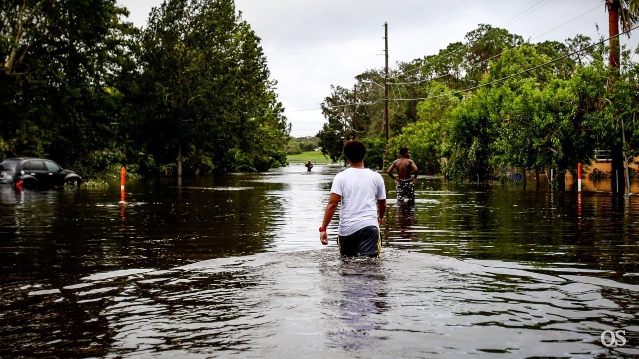 Food Stamp Assistance In Orlando Florida