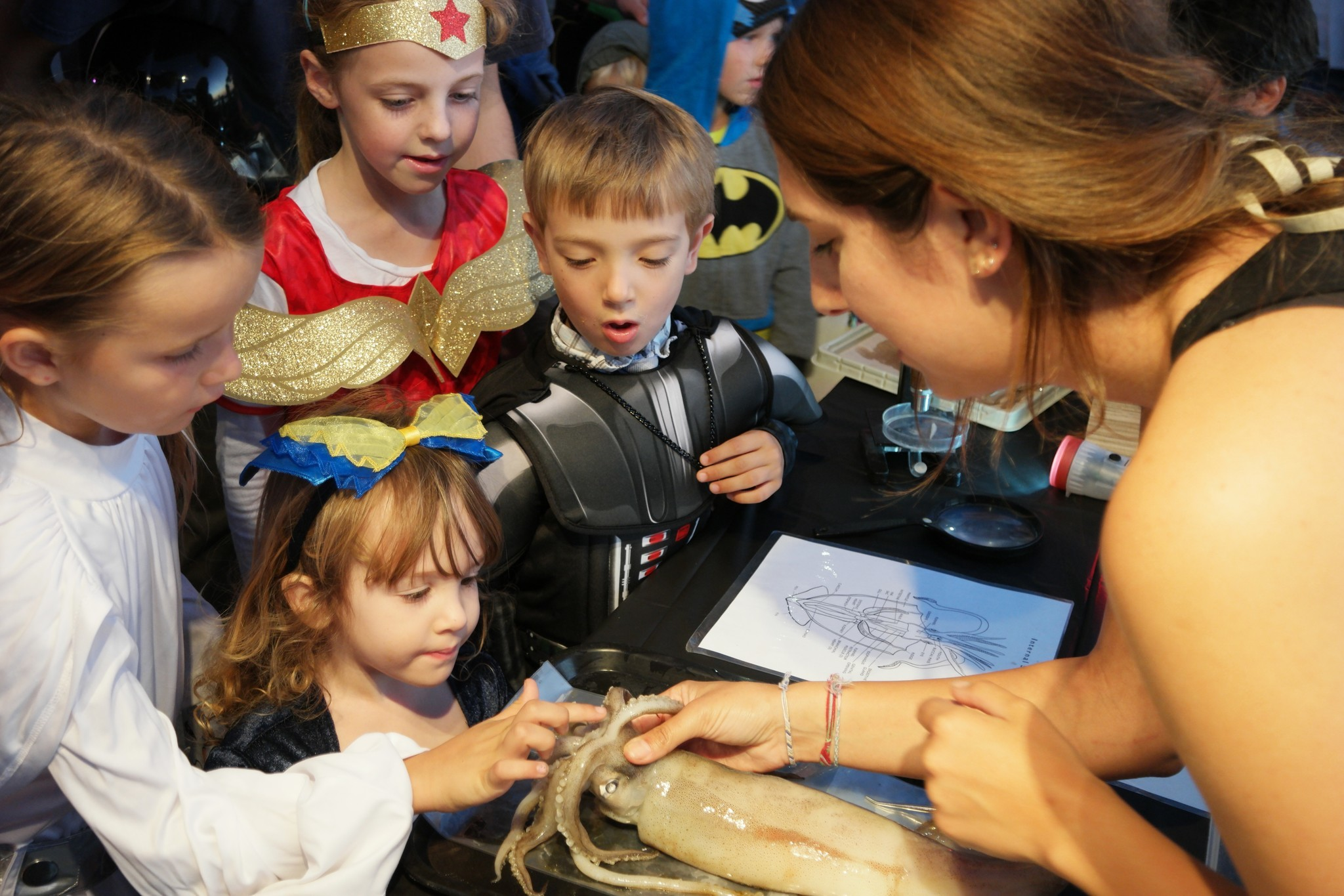 Get up close and personal with creatures from the deep at Birch Aquarium during the Haunted Aquarium event.