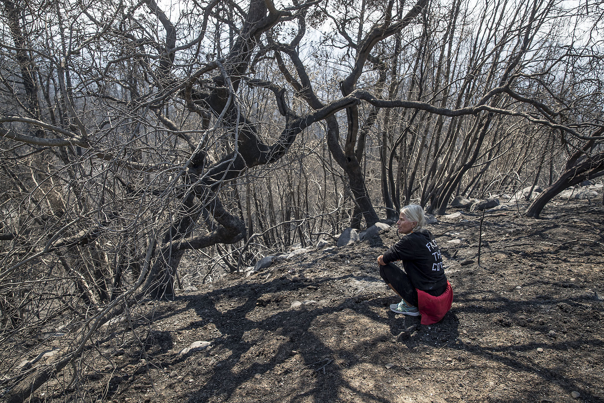Jan Pascoe sits among the burned landscape near her home where she and husband John survived the firestorm Monday morning by running out of their home and into their neighbors swimming pool in Santa Rosa.