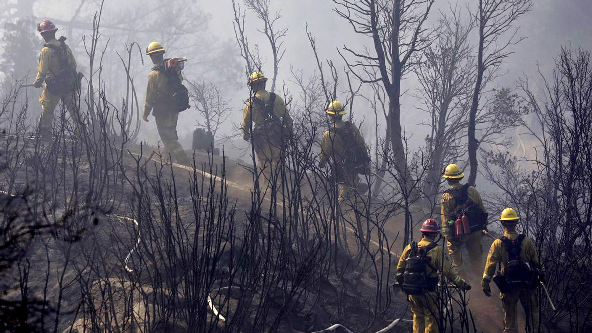 Firefighters cut a path through charred terrain as they work to extinguish a fire in Angeles National Forest.
