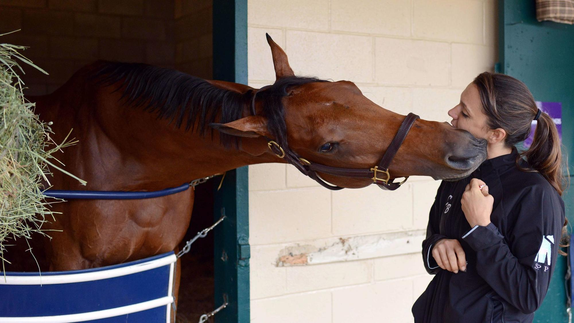 Lady Eli Withdrawn From Sale After Suffering Leg Injuries