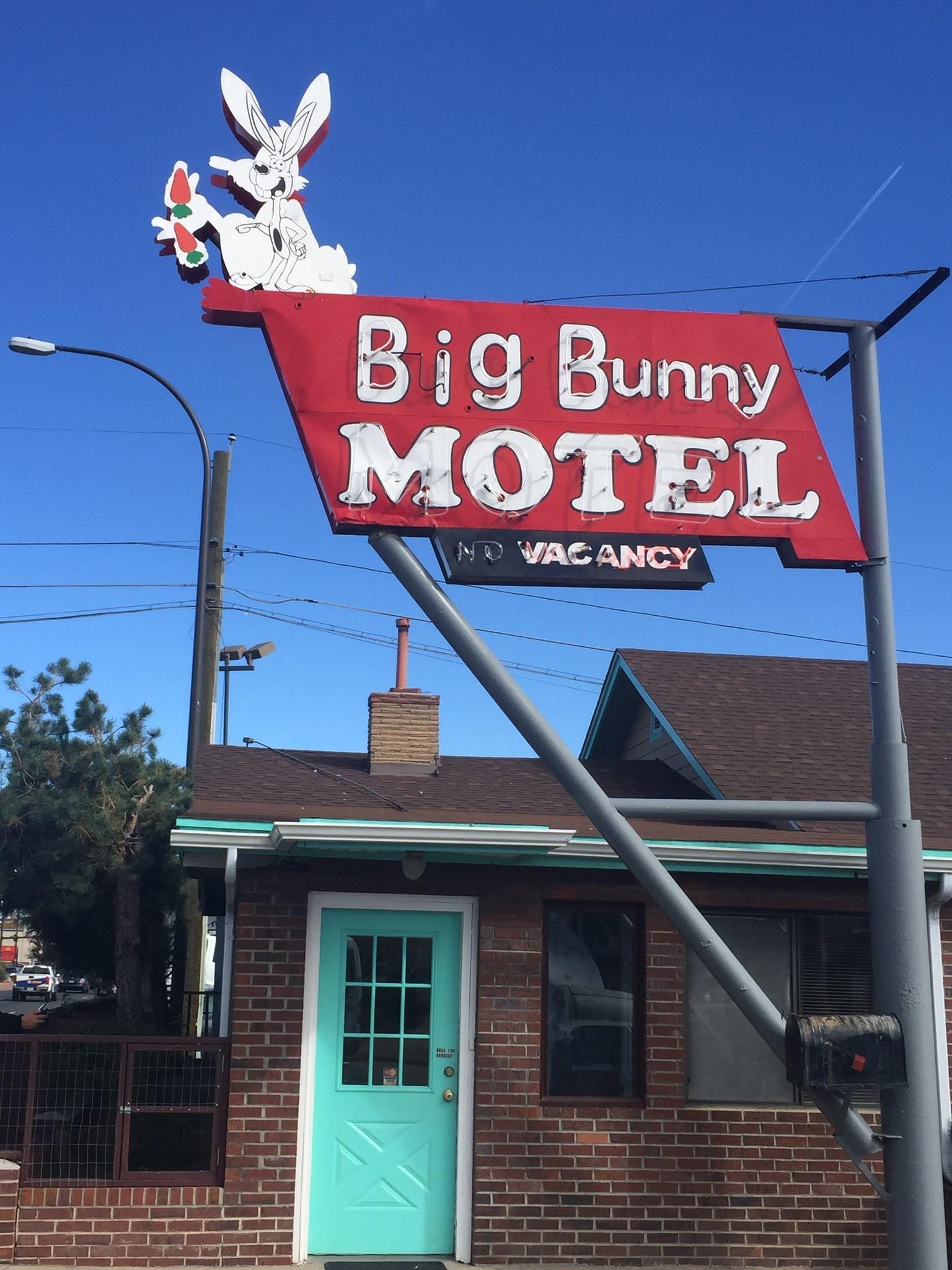 Big Bunny Motel