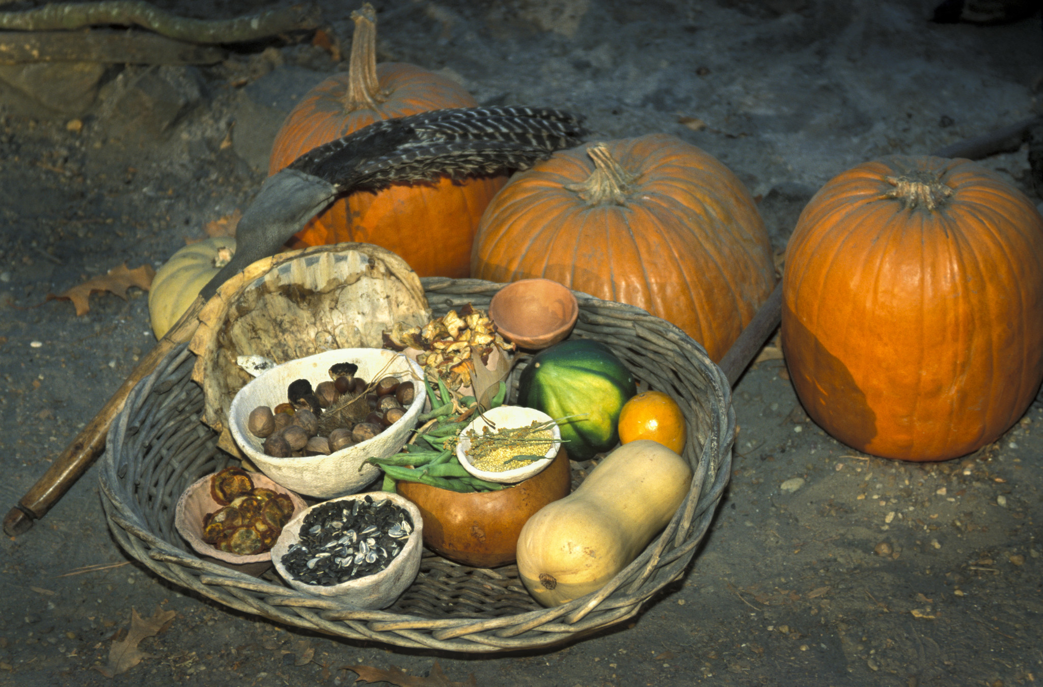 Blackfoot Indians Food: American Indian S History And