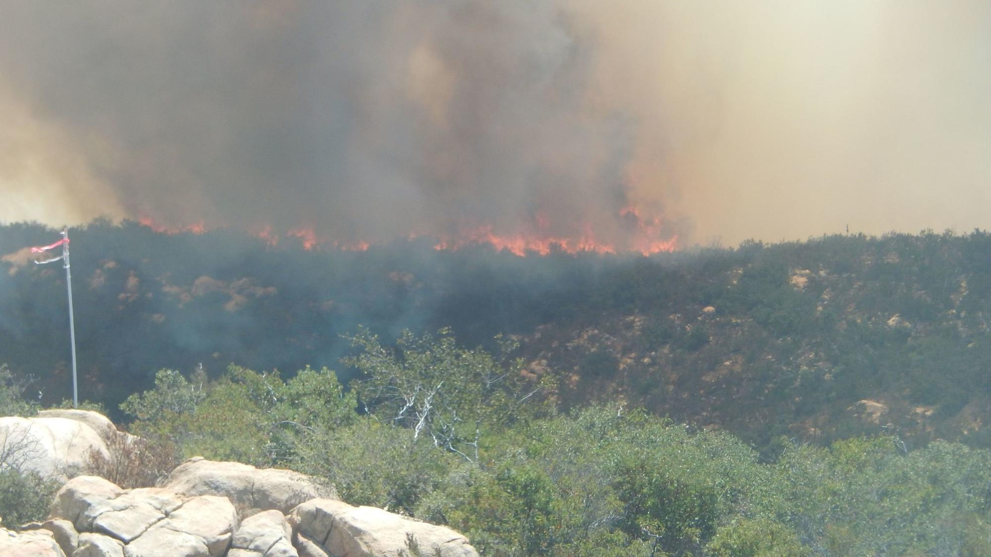 Wind Whipped Lilac Wildfire Burns 2 000 Acres Near Fallbrook