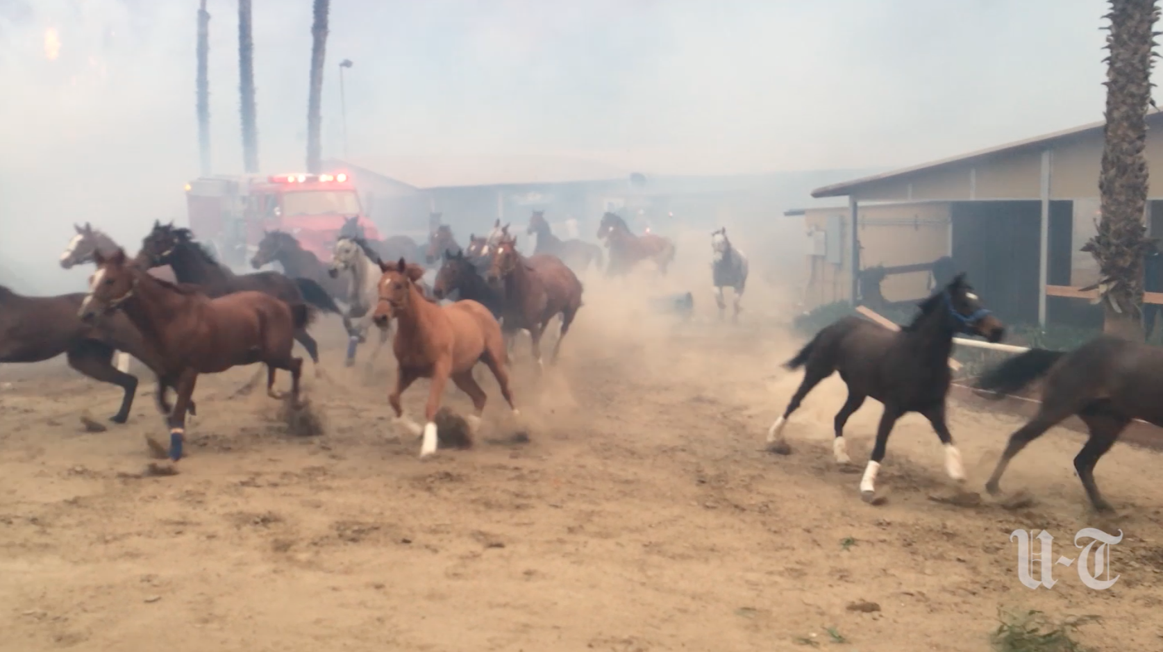 california fires sudden firestorm forces deadly stampede at bonsall