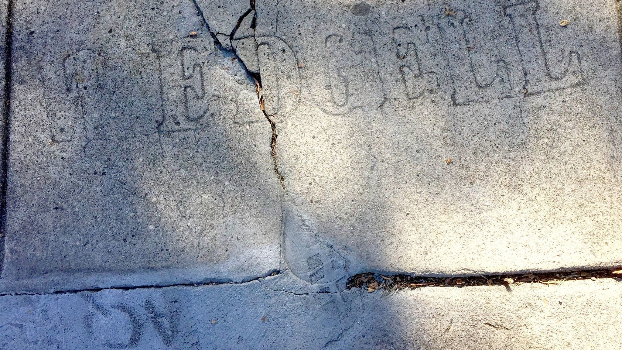 W. Edgell, getting fancy with the fonts on North Torrey Pines Road 100 years ago, now competes for space against a more modern sidewalk 'artist' (someone named AQ at bottom left)