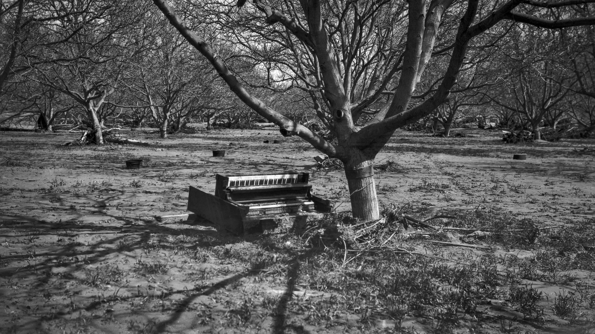 March 1928: Damaged piano in a orchard following the flood caused by the failure of the Saint Franci