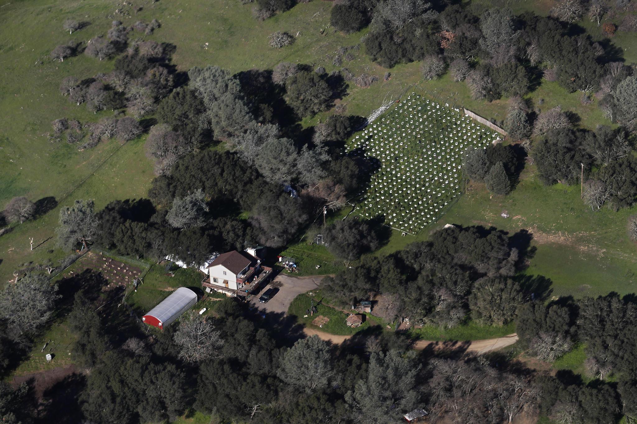 A rural county legalized marijuana farms  It took their tax money