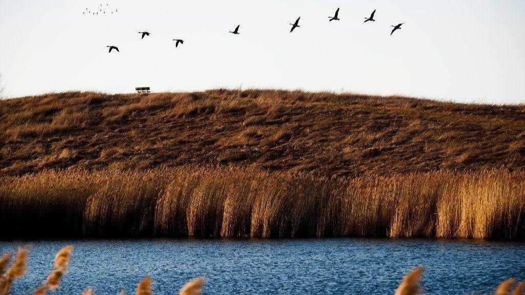 Indigenous Knowledge, Key to a Successful Ecosystem Restoration