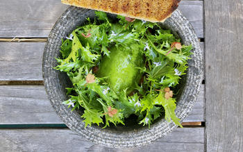 Avocado salad with salsa verde and raspberry dressing