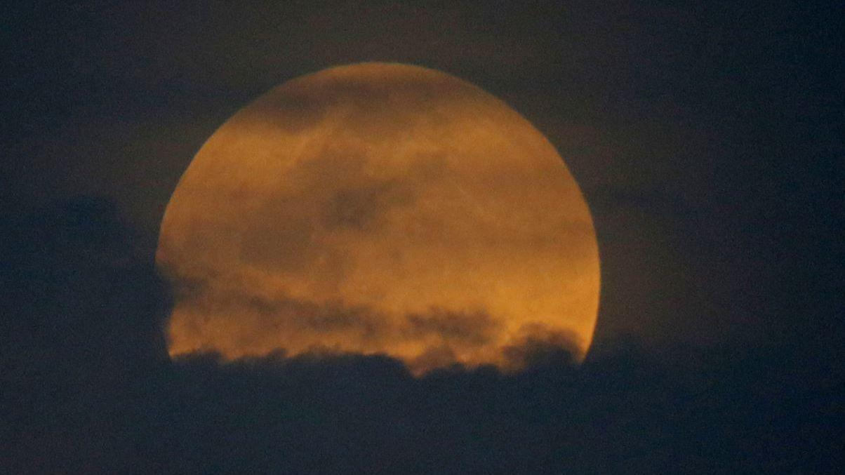 blood moon today in florida - photo #14