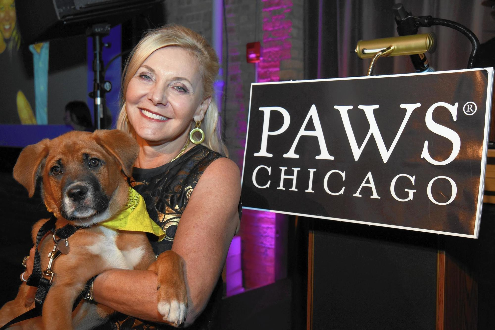 PAWS party funds programs for homeless animals, honors top supporters