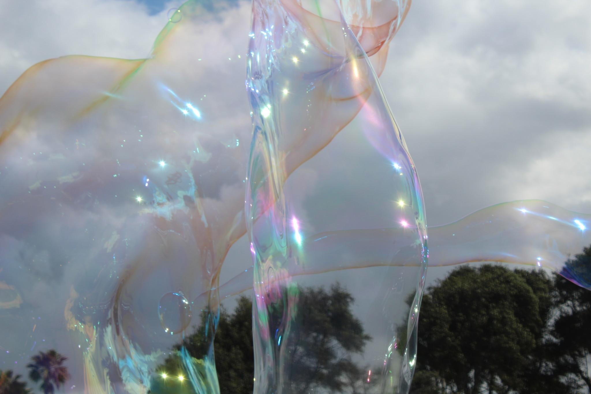 Eric Elam's bubbles rise above Ellen Browning Scripps Park.