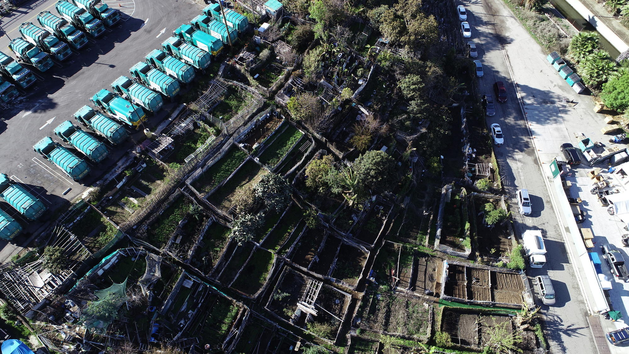 One of L A 's oldest community gardens thrived for decades  Then the