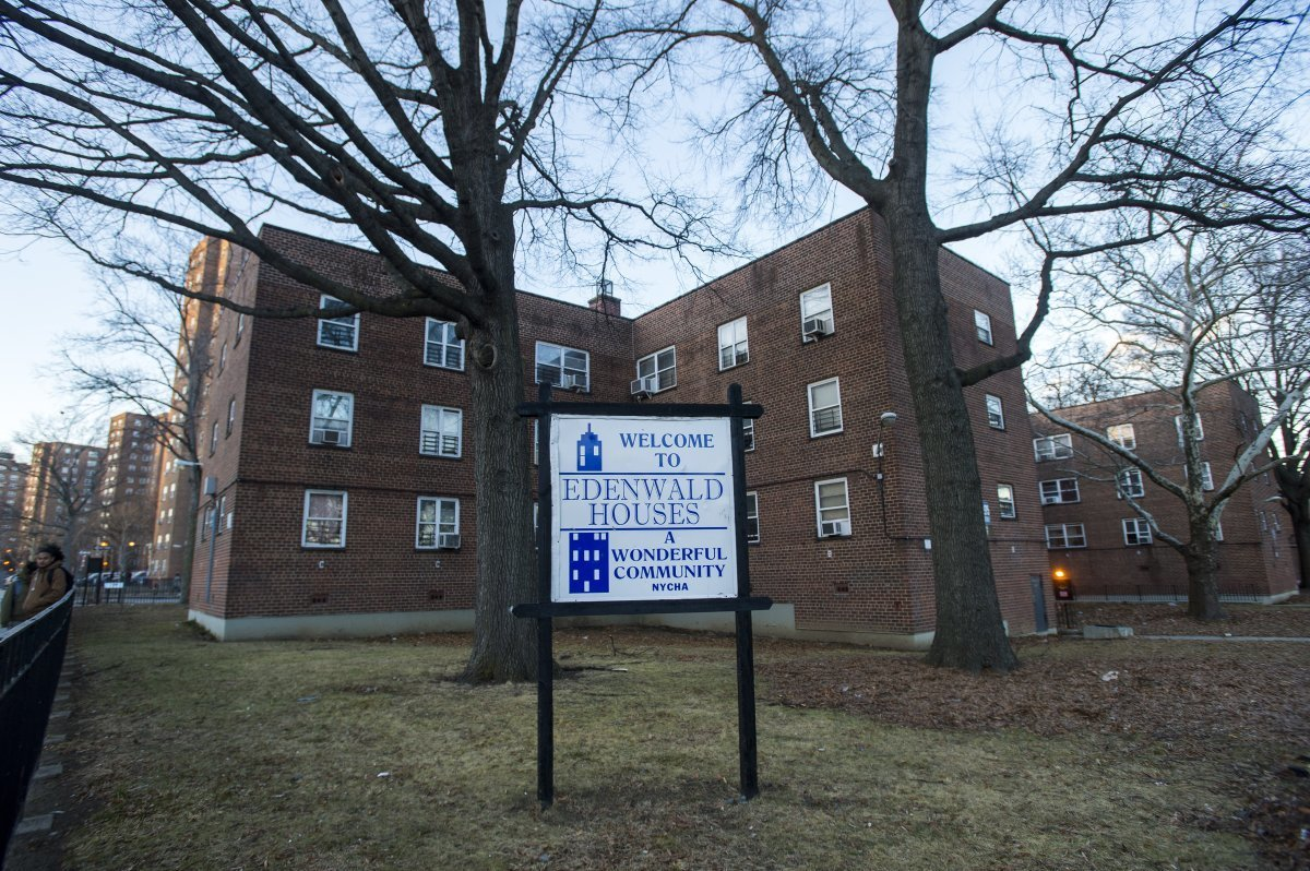 NYCHA mold, mildew complaints are down, stats show