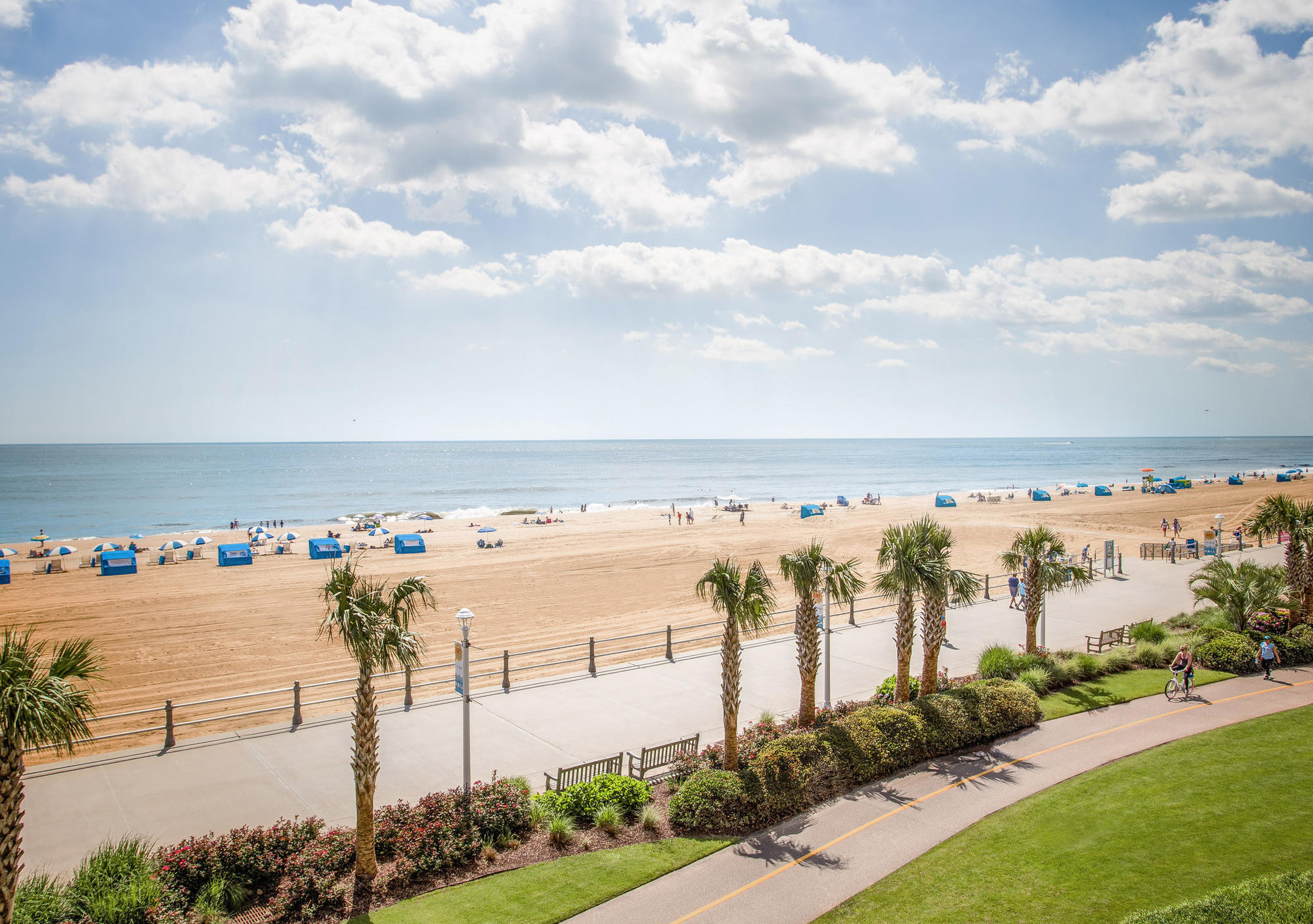Virginia Beach Where To Take The Kids And What Check Out This Summer Baltimore Sun