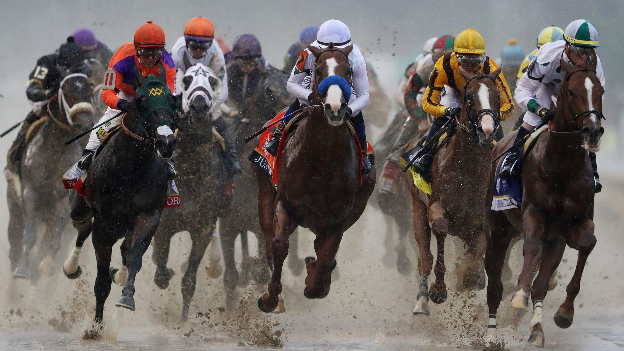 Image result for preakness stakes 144