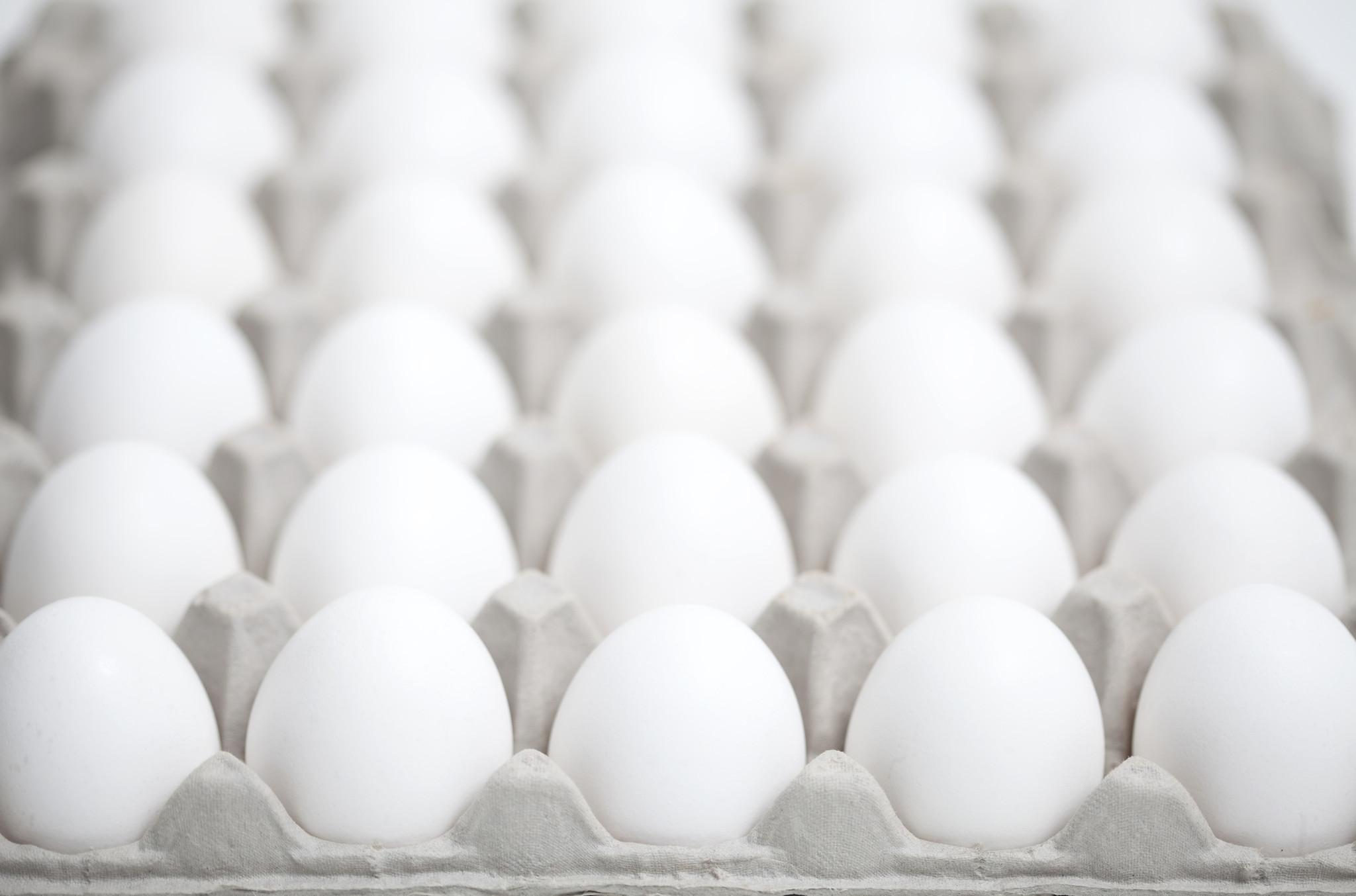 egg recall - photo #20
