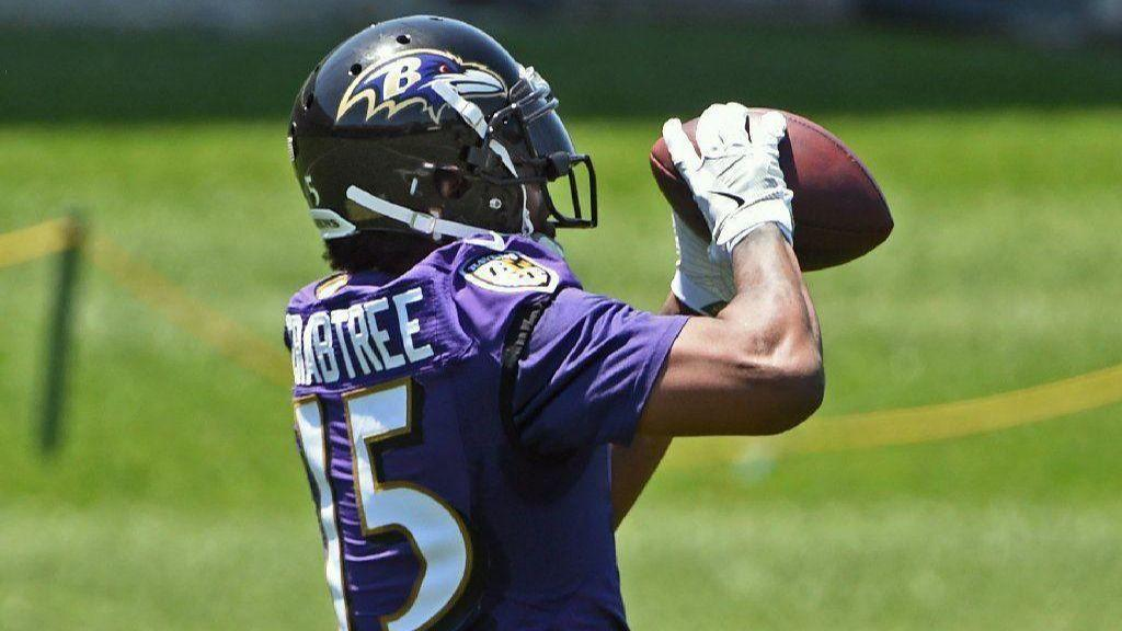 5dd35c54 Ravens notebook: Michael Crabtree fitting in well; 13 players not  participating in OTAs - Baltimore Sun