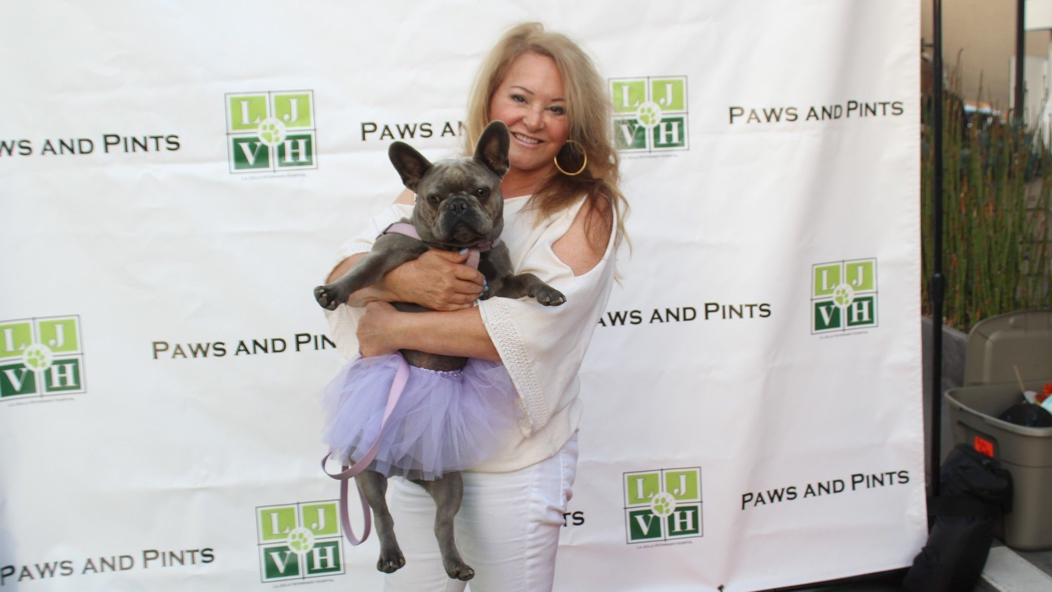 La Jolla resident Jerri Hunt arrives with Bella Bleu the French Bulldog, who looks thrilled to be here.