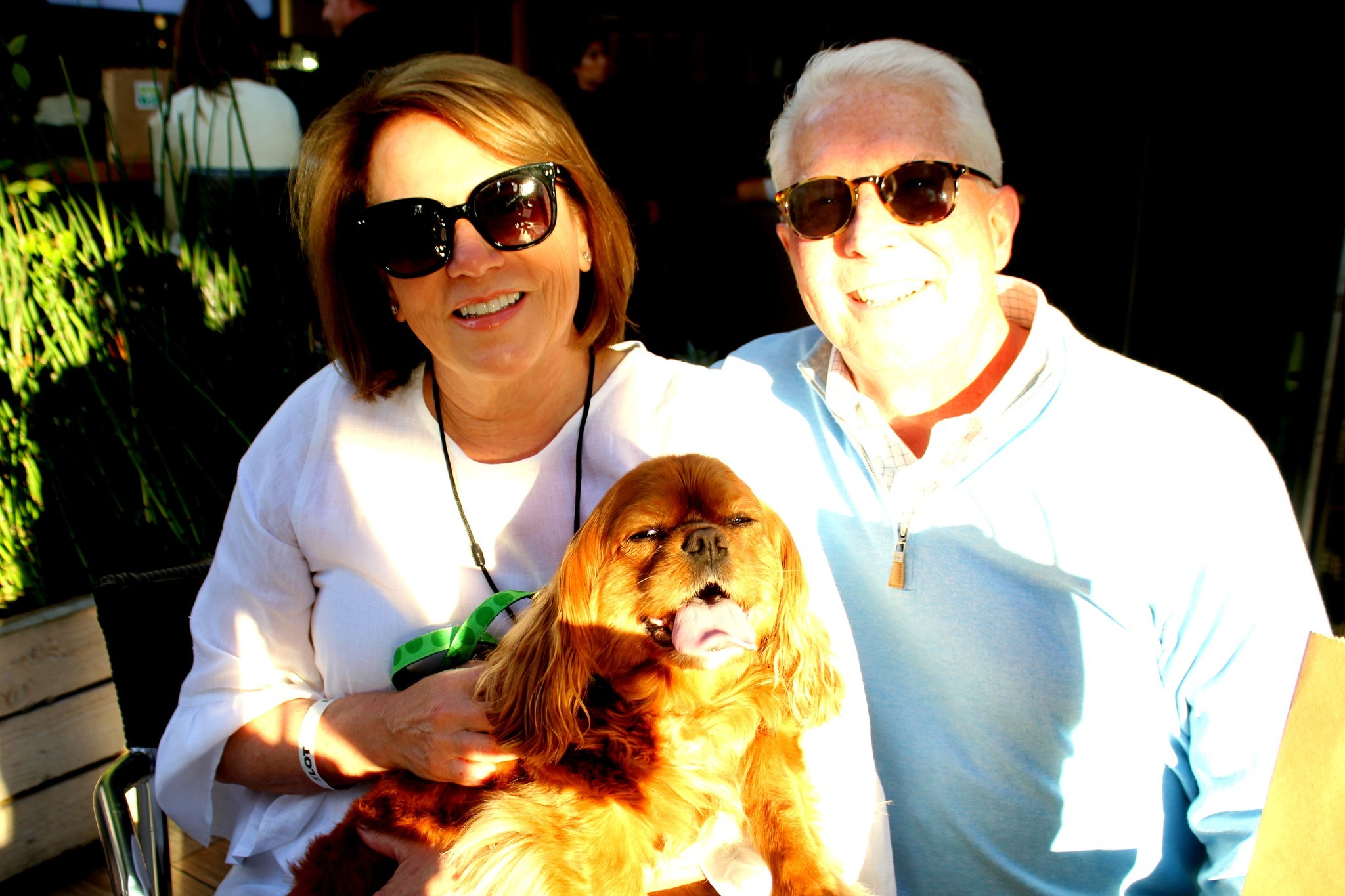 Anita and Dr. Dean Hakanson pose in the fading sun with their King Charles Cavalier Chloe, the grand marshal of the La Jolla Veterinary Hospital's float at the last La Jolla Chri