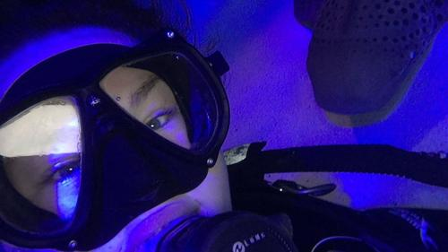 Sea Life Orlando marks Shark Month with 'sharkfie' opportunities