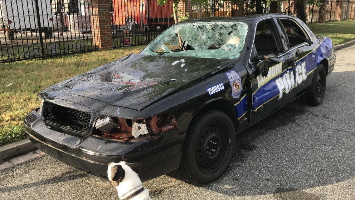 K-9 locates runaway teen | News | myeasternshoremd.com