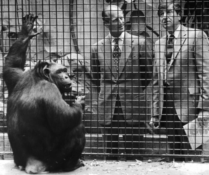 Prince Philip visits Lincoln Park Zoo, 1982