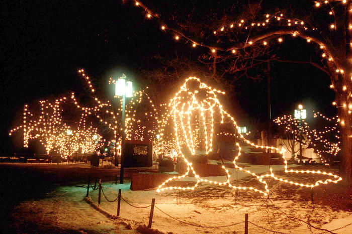 First ZooLights, 1995