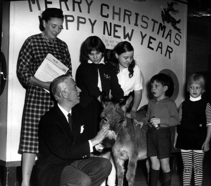 Christmas at the Lincoln Park Zoo, 1961