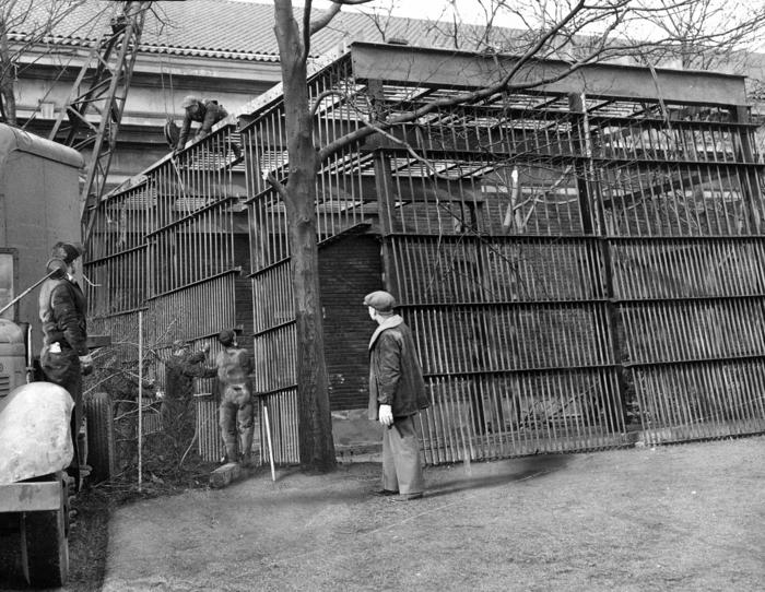 Outdoor cage for Bushman, 1947