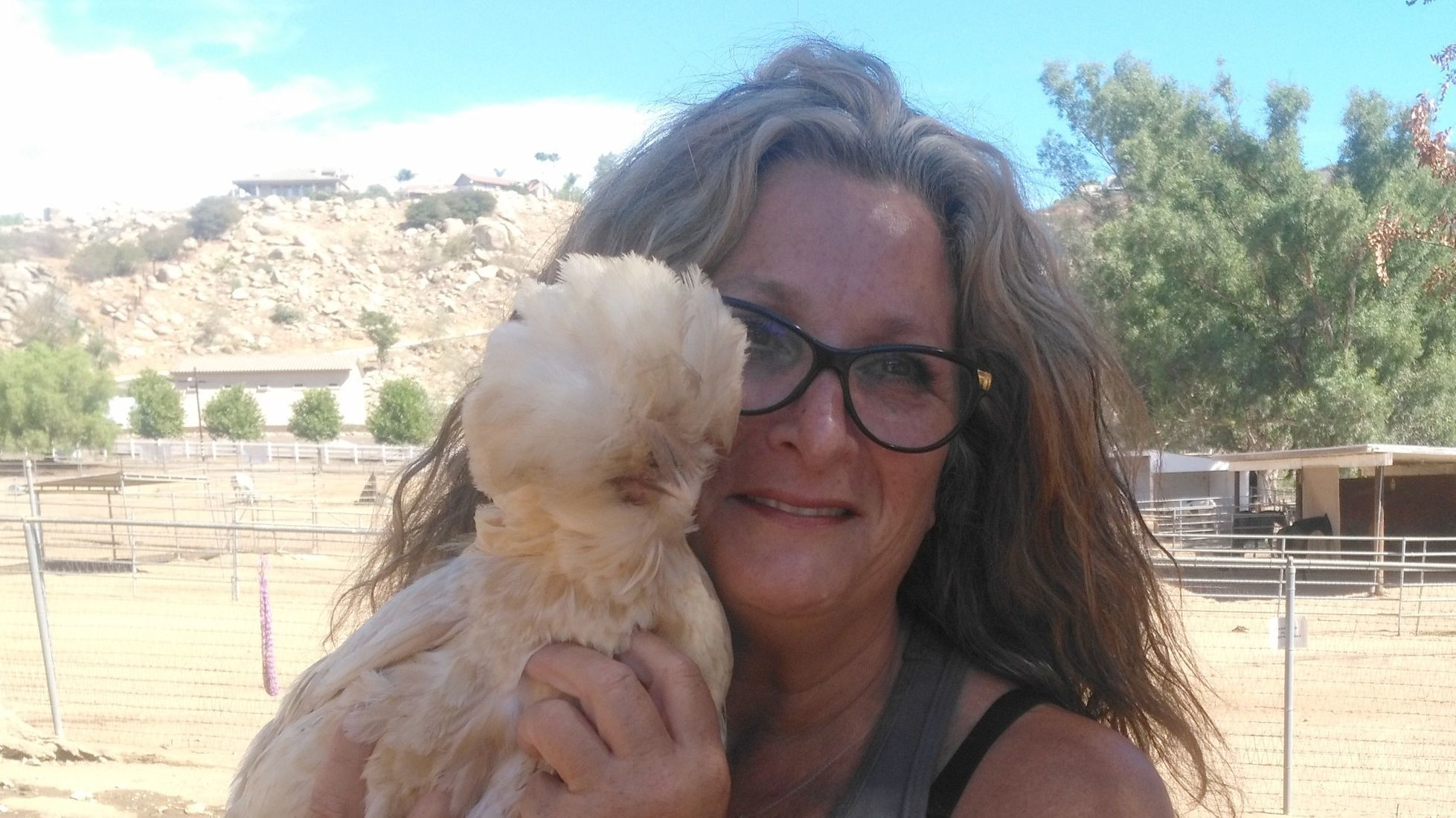 Ilana Friedman pets Chanel, one of many chickens that roam the 5-acre property at 2 The Rescue Animal Sanctuary in Ramona.
