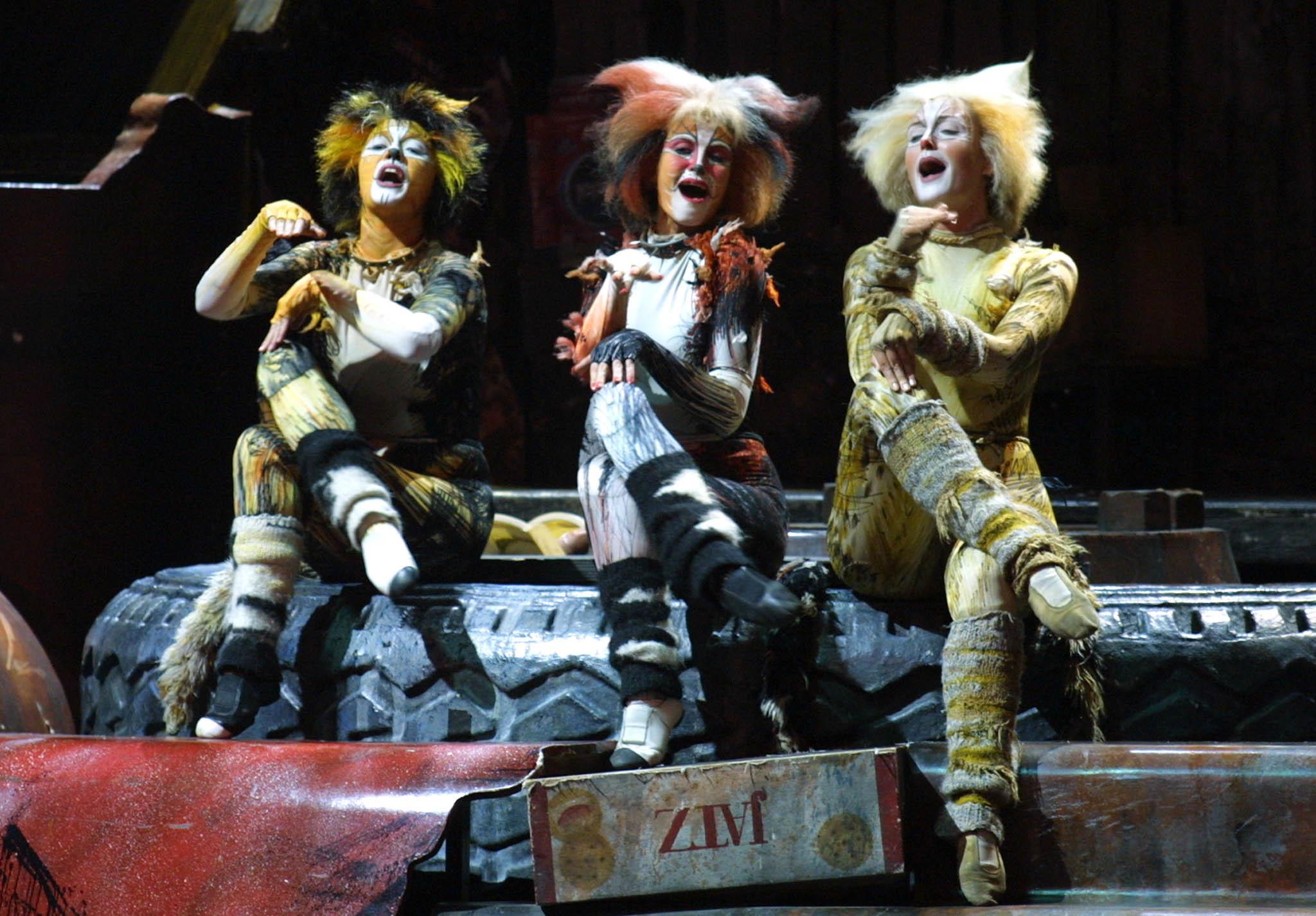 cats movie - photo #37