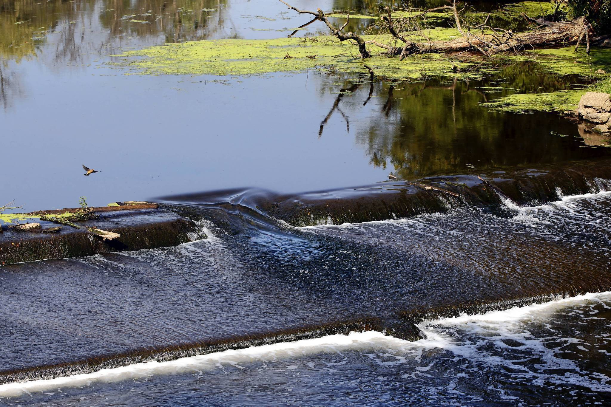 2 more dams set for removal in Lake County - Highland Park News