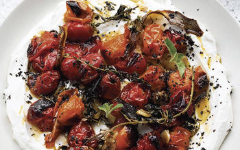 Hot, charred cherry tomatoes with cold yogurt