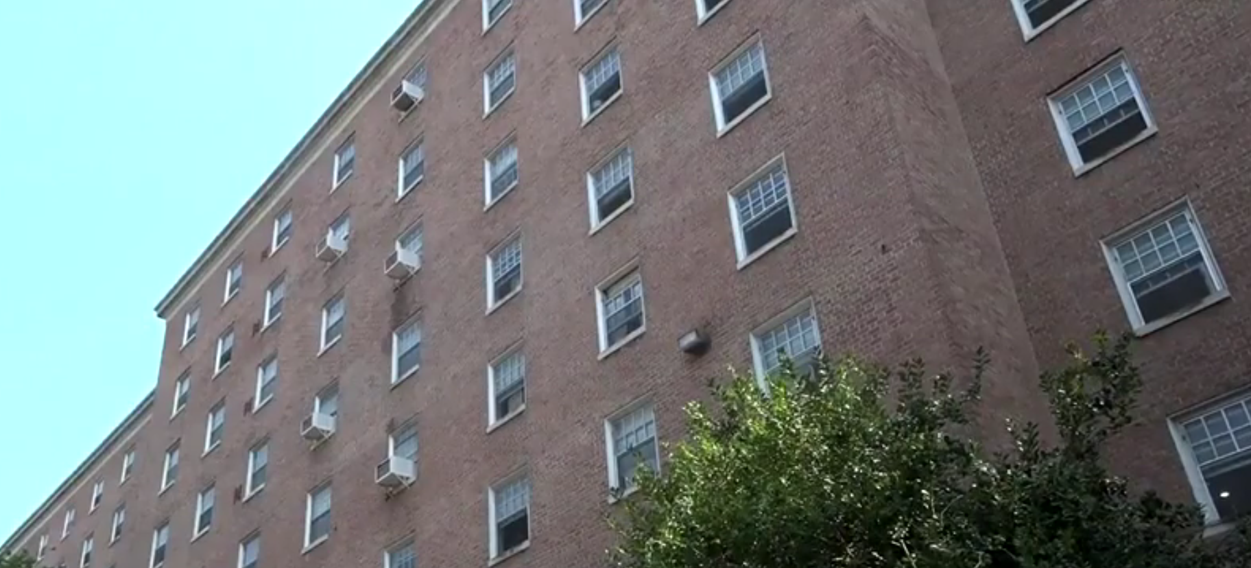 Everyone Is Coughing Mold In Dorms Prompts University