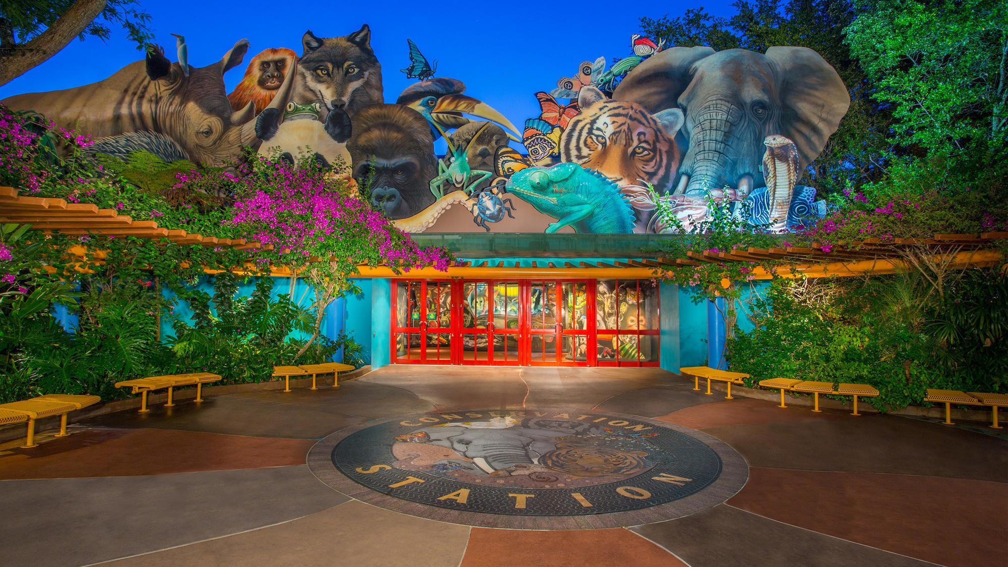 Animal Kingdom Animal Planet Animal World Free Animal: Disney: Rafiki's Planet Watch Closing To The Public Next