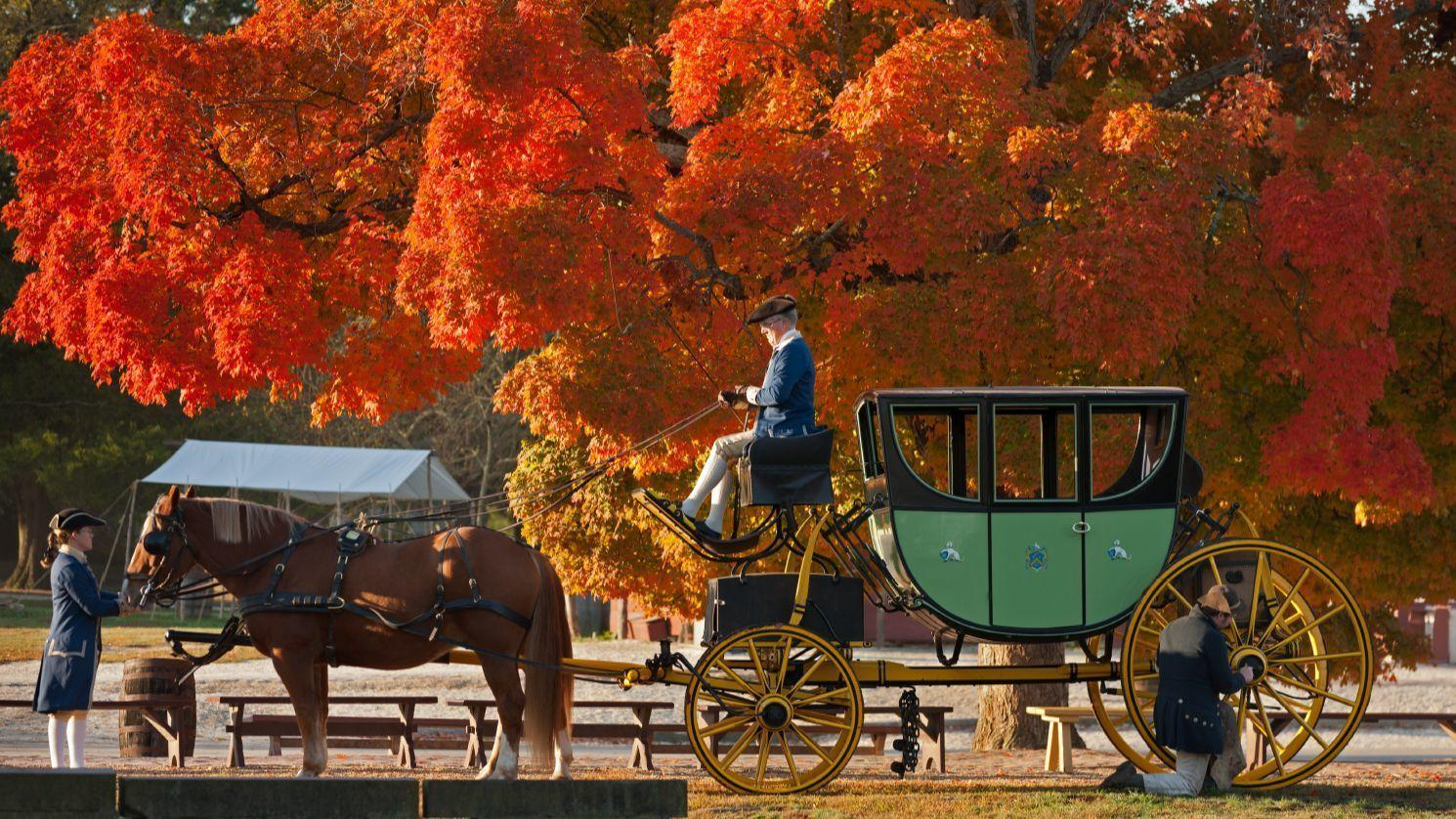 Colonial Williamsburg Trees Gardens Ranked By Global
