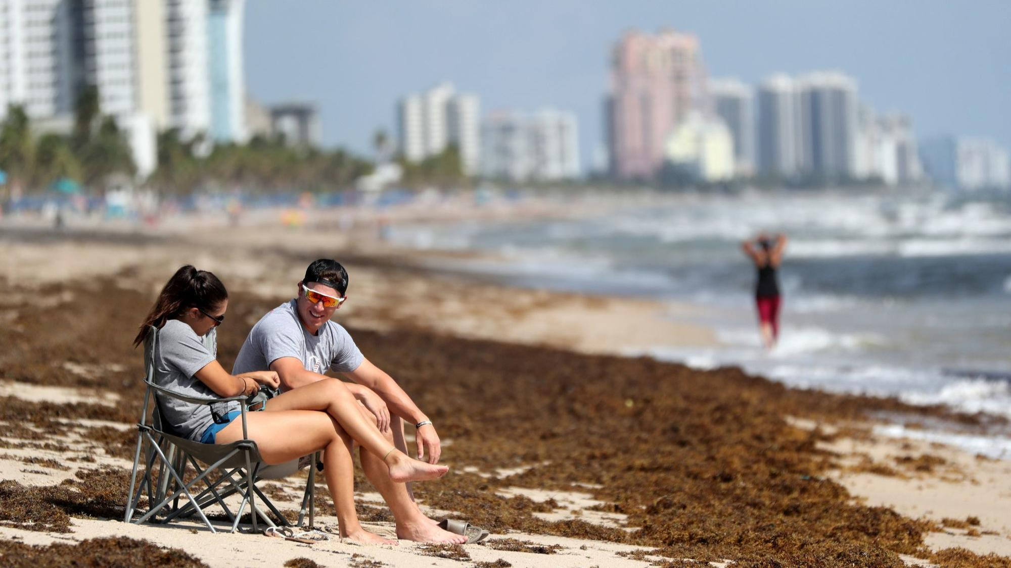 Red Tide Levels Are Lowest Off Broward Higher Off Palm Beach And