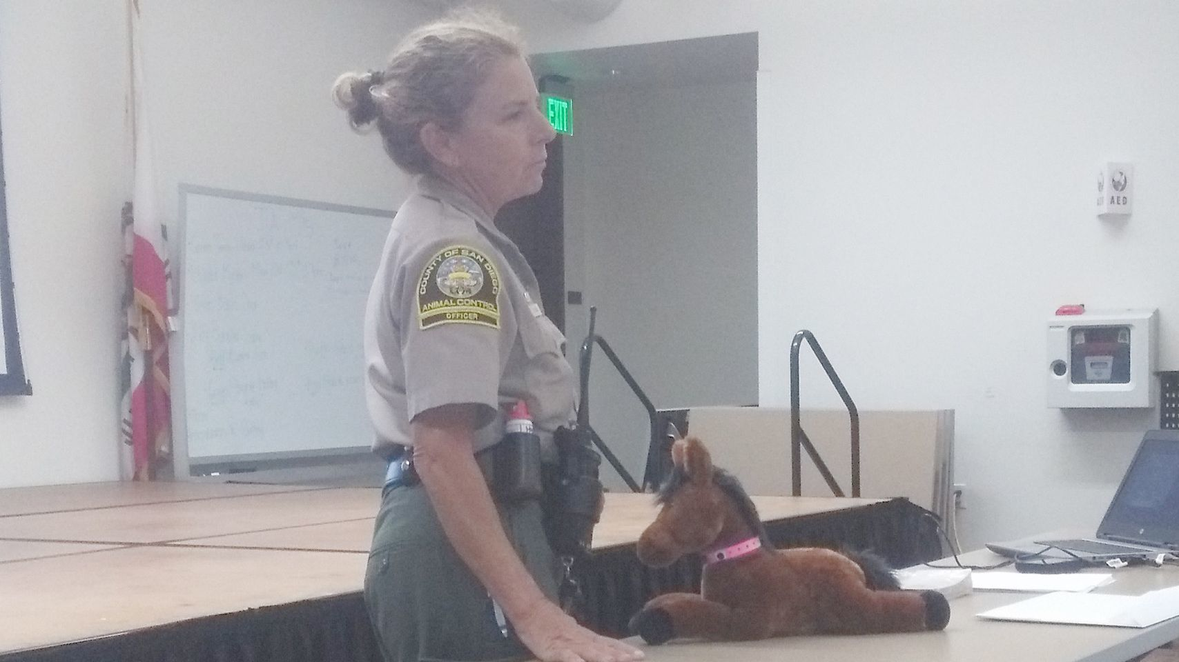 San Diego County Animal Services Officer DJ Gove suggests animal owners get microchips for their large and small animals so emergency responders can digitally access their IDs.
