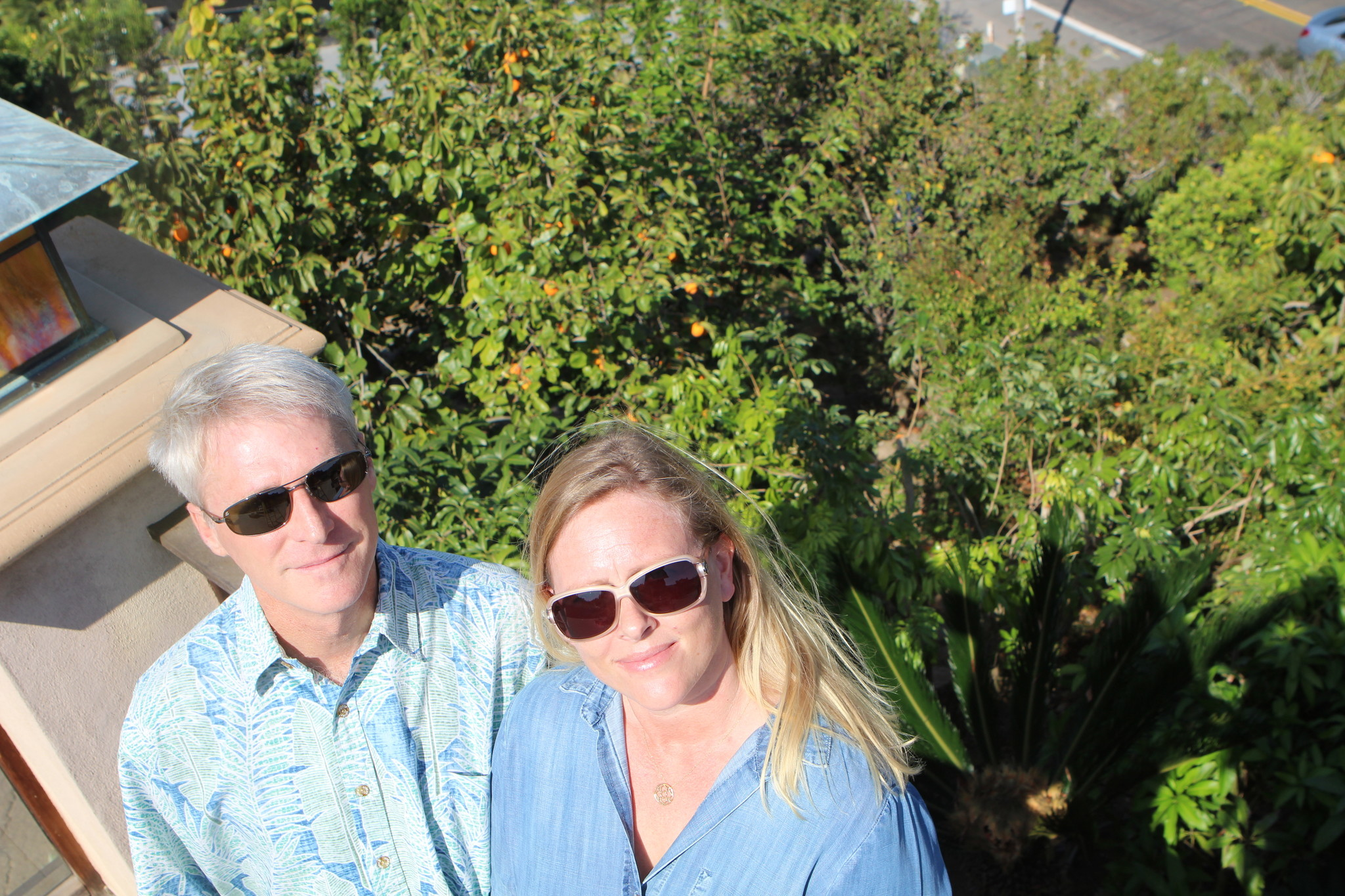 Todd and Nanette Lesser grow 100 varieties of fruit in their Mt. Soledad front yard.