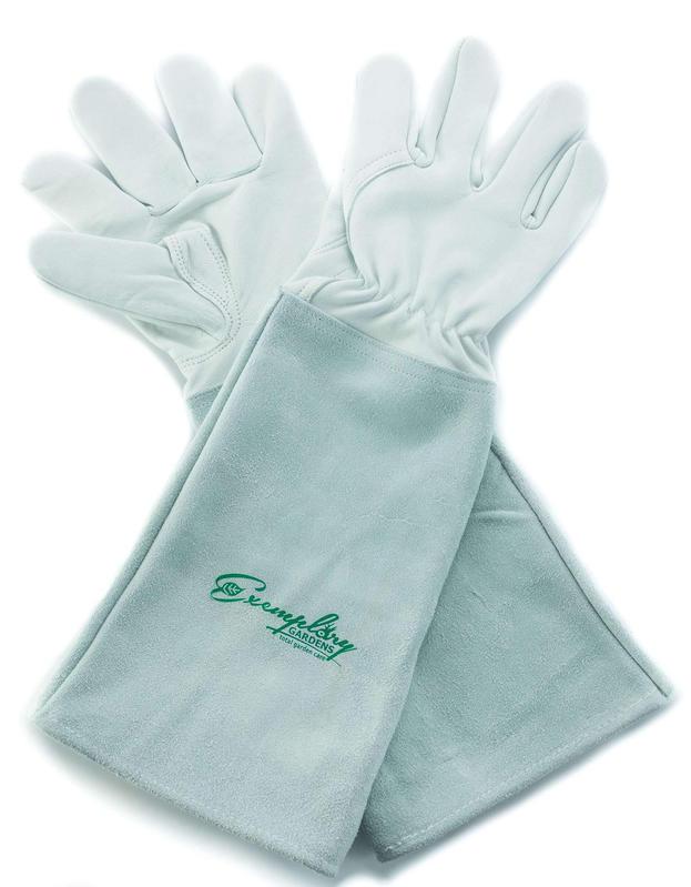 Goatskin rose pruning gloves