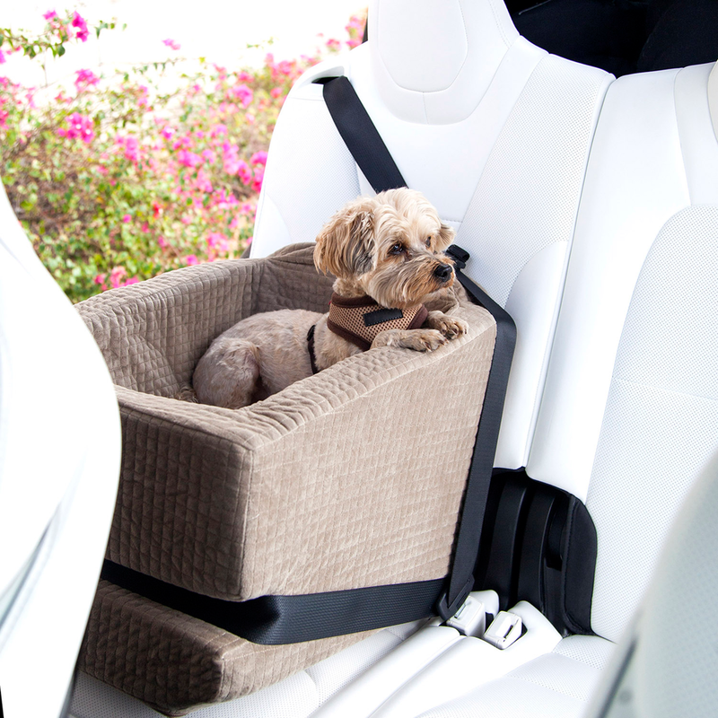 Doggie car seat