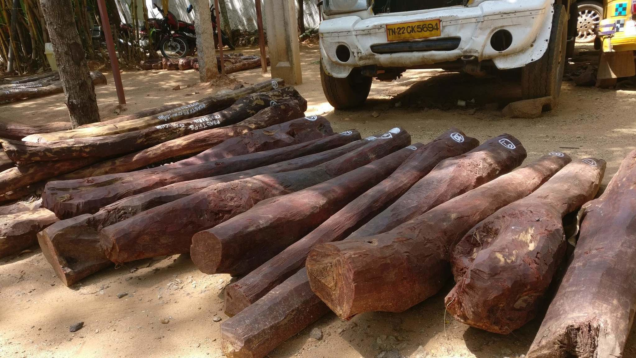 Red sandalwood smuggling
