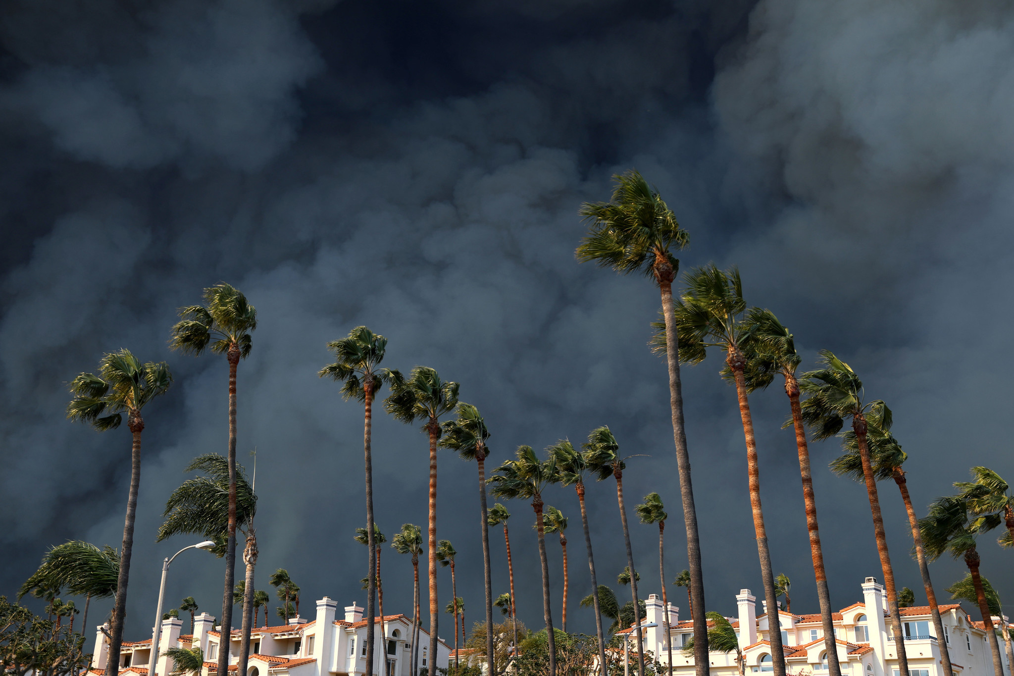 MALIBU, CA-NOVEMBER 9, 2018: Smoke billows behind a building and palm trees along the PCH in western