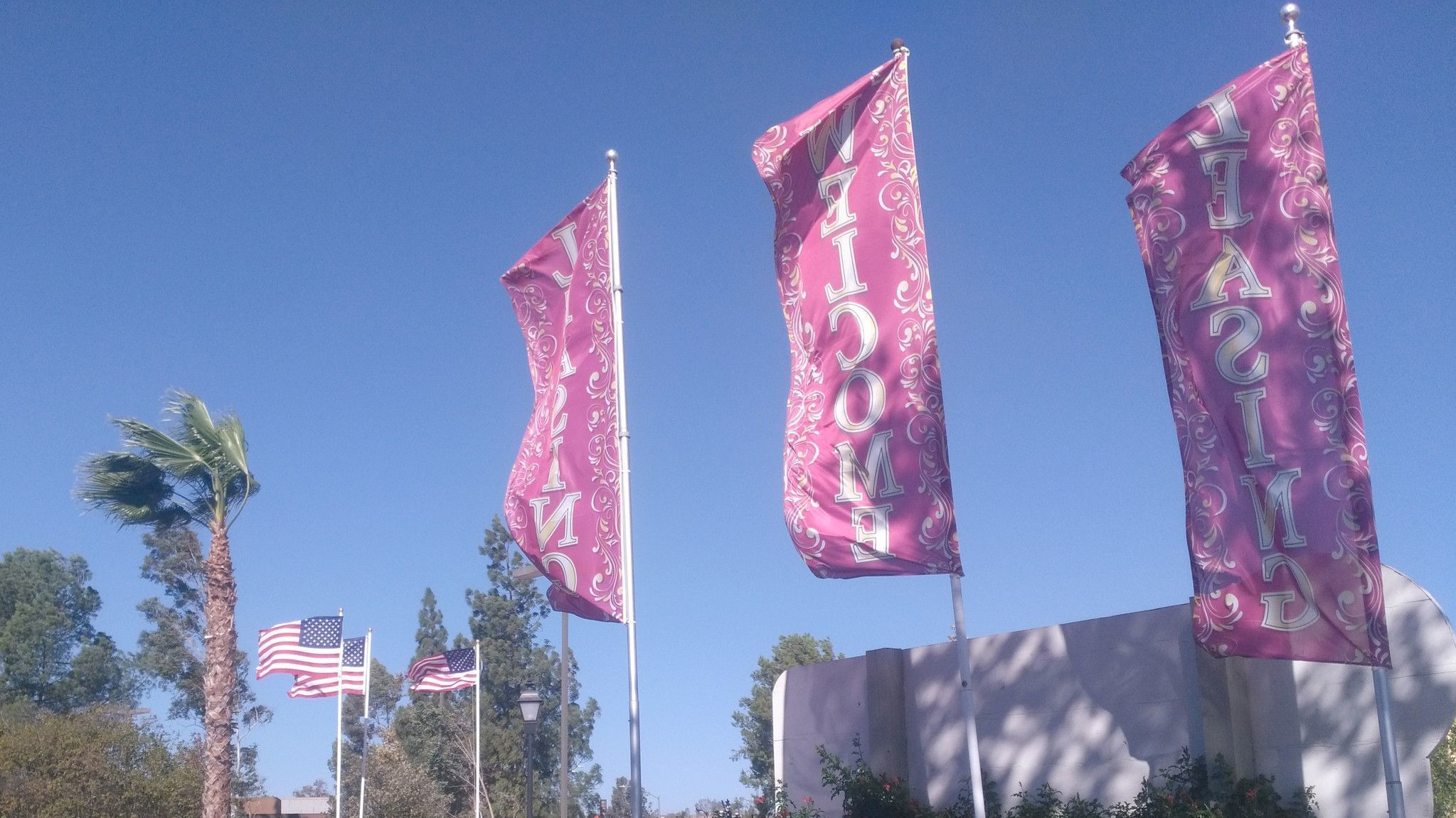 Leasing banners and flags flap in the wind at Quail Run apartments on 14th Street.