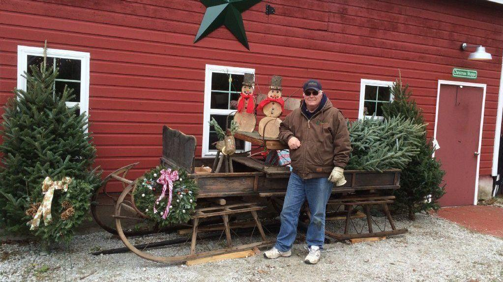 Get Your Christmas Tree From A Local Farm
