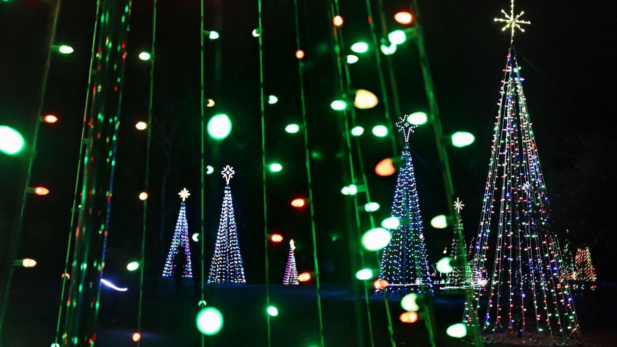 Holiday lights brighten the season - Williamsburg Magazine
